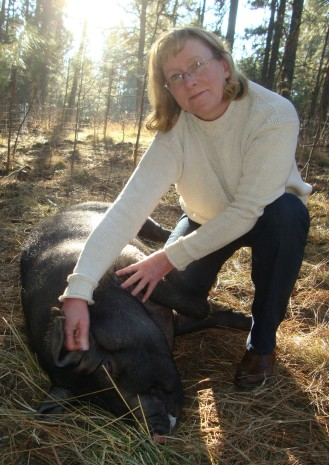 Petting Boomer, the Large Black/Berkshire sow.